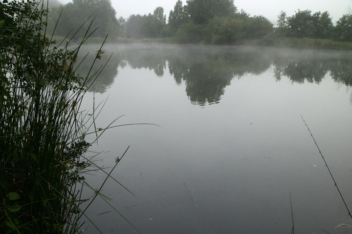 Wallington Hall, Lake 3 - mist rolling across the water